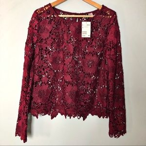 H&M Long Sleeve Lace Top for the Holidays NWT